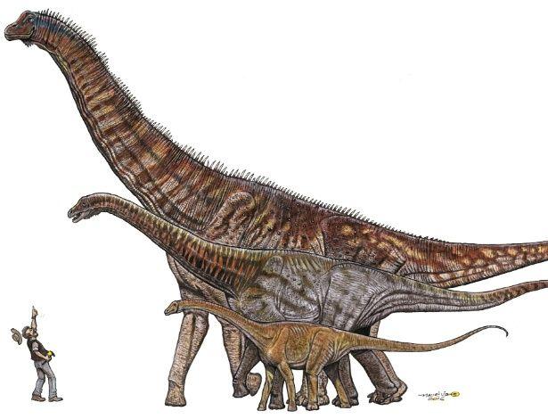 Cientistas anunciam descoberta do maior dinossauro do Brasil, com 25 metros