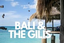 Travel tips, photo inspiration, and guides about Bali and The Gili Islands Indonesia