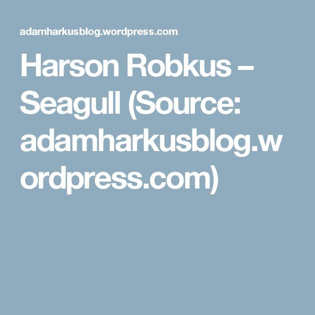Harson Robkus – Seagull (Source: adamharkusblog.wordpress.com)