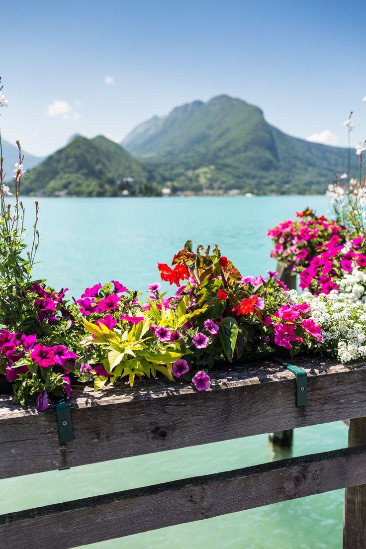 #chateauhotelscollection #talloires #annecy #lake #lac #mountains #montagne #detente #loisirs #vacances #fleur