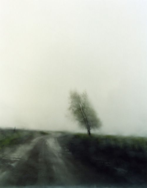 Todd Hido, 6405, photographie, 2007.