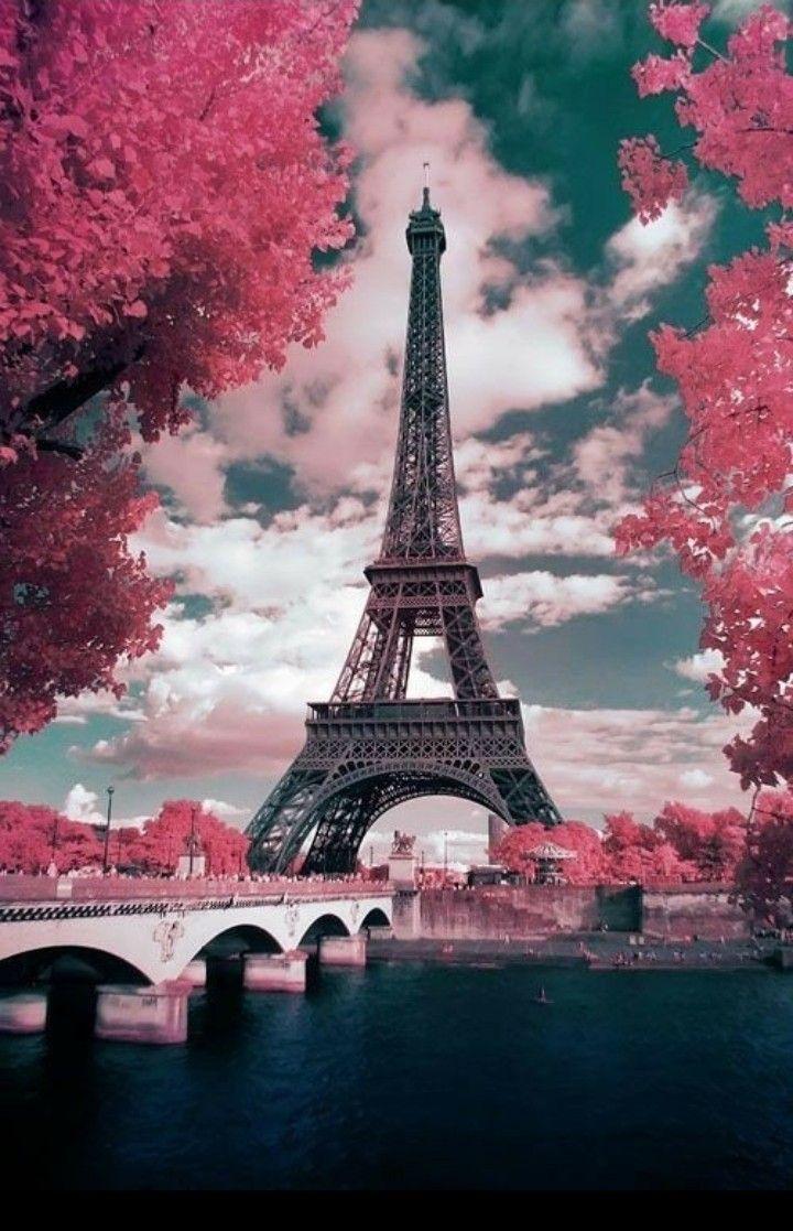 パリ の画像 投稿者 Yoshie K さん エッフェル塔 旅行参考