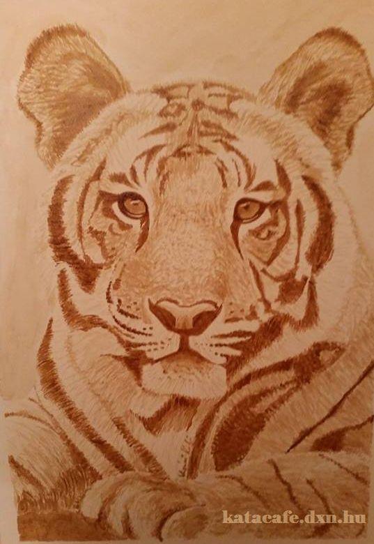 Vigyázzunk az állatokra!!! http://katacafe.dxn.hu/