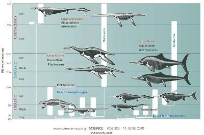 Monstros marinhos de sangue-quente - Colecionadores de Ossos (BONE COLLECTORS)