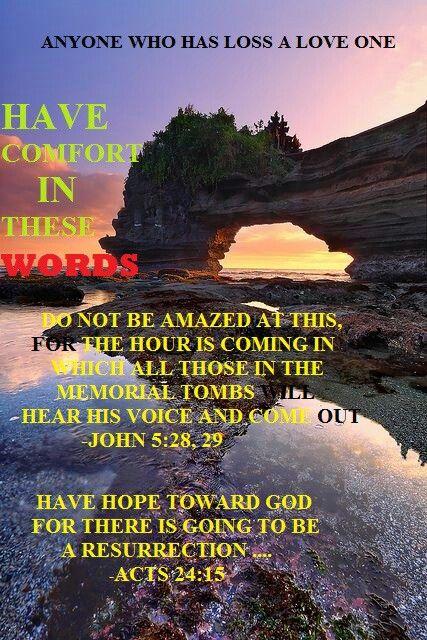 John 5:28, 29; Acts 24:15   JW.org   Pinterest