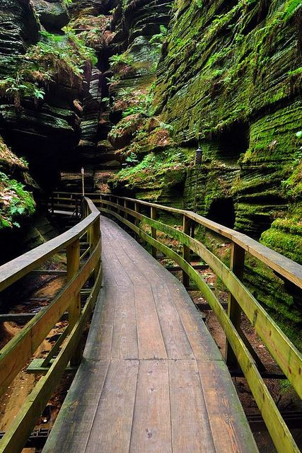 Canyon Path, Wisconsin