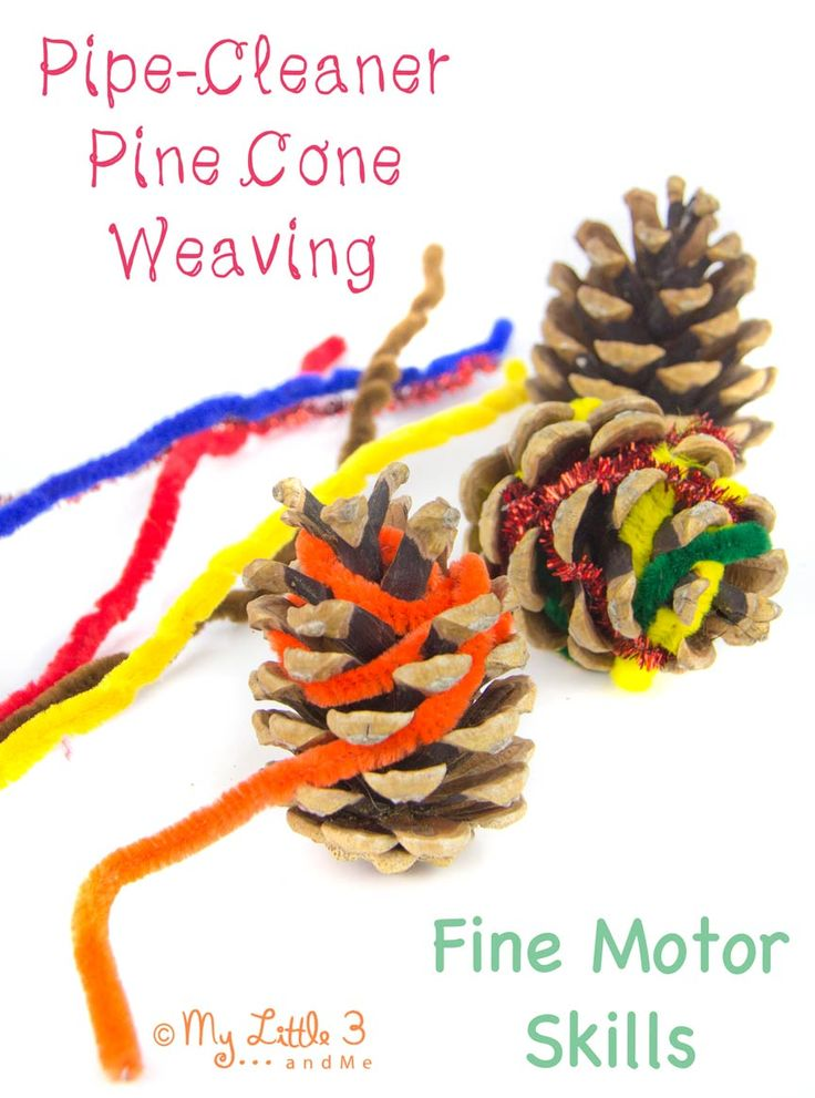 Pine Cone and Pipe Cleaners Fine Motor Skills activity for toddlers and preschoolers