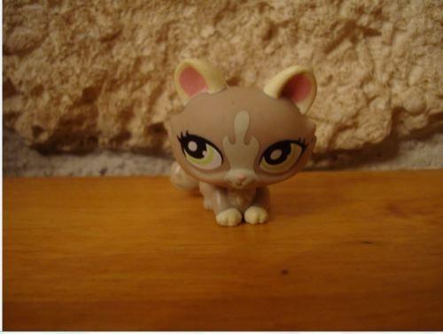 LITTLEST-PETSHOP-PET-SHOP-LPS-CHAT-cat-1370-RARE-sphynx-1370-cat-1505