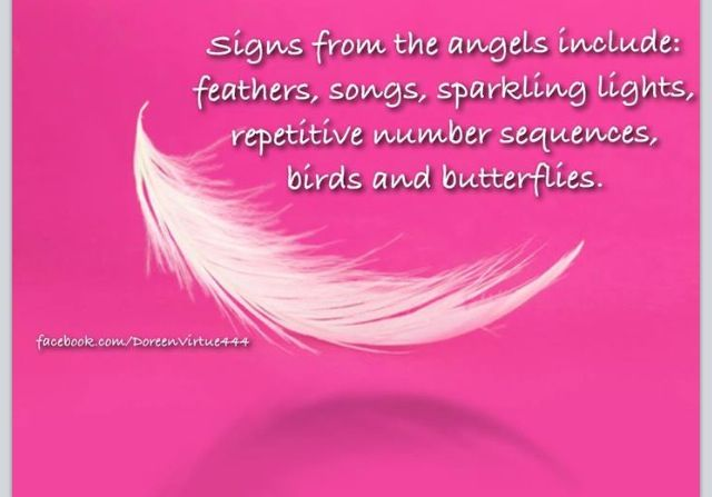 ∆ Angels...I see the sparkly lights, feathers, and the repetitive number sequences on a daily basis<3  I know my Guardian Angels are Always around my family and I <3