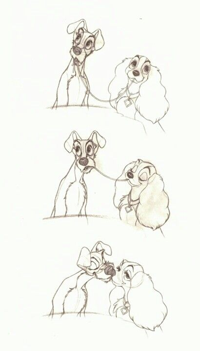 """""""Lady and the Tramp""""   © Walt Disney Animation Studios*  • Blog/Website   (www.disneyanimation.com) • Online Store    (http://www.disneystore.com)  ★    CHARACTER DESIGN REFERENCES™ (https://www.facebook.com/CharacterDesignReferences & https://www.pinterest.com/characterdesigh) • Love Character Design? Join the #CDChallenge (link→ https://www.facebook.com/groups/CharacterDesignChallenge) Share your unique vision of a theme, promote your art in a community of over 50.000 artists!    ★"""