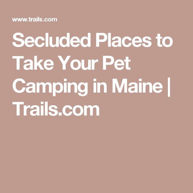 Secluded Places to Take Your Pet Camping in Maine | Trails.com