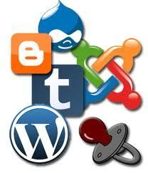Los plugins de tu wordpress.