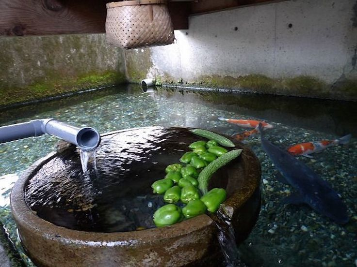 Kabata - Japanese spring house where carp are employed to eat kitchen scraps as you wash your dishes and rinse your veggies. The clean fresh water then flows into a stream where it can be used for irrigating crops.