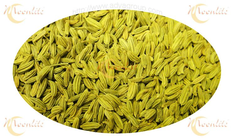 Indian Spices : Fennel Seeds  At Moonlite Food Inc through AdyaGroup.com we are manufacturer and world wide suppliers of best quality and fresh whole Indian Spices. This Fennel Seeds Indian Spice also one of them.   Know more about our Indian Fennel Seeds :-   https://goo.gl/TBL2qH