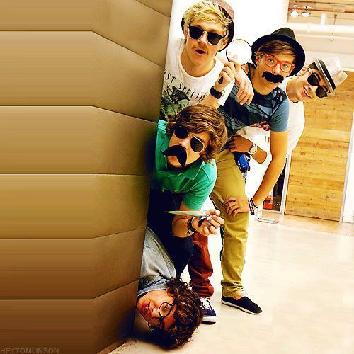 funny one direction pictures | cute, funny, one direction - inspiring picture on Favim.com