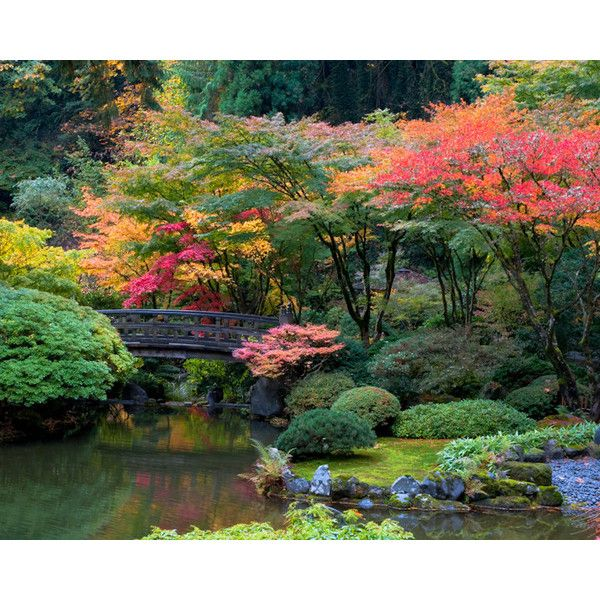 102 best images about japanese garden on pinterest for Japanese garden colors