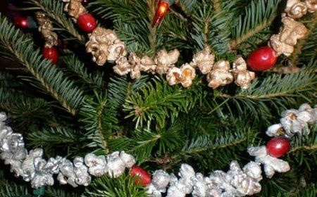 with popcornChristmas Time, Holliday Ideas, Metals Popcorn, Time Trees, Cranberries Decor, Popcorn Garlands, Popcorn Ideas, Popcorn String, Christmas Ideas