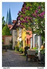 Schleswig-Holstein, Germany...the land of my Father!  (Danes that speak German)