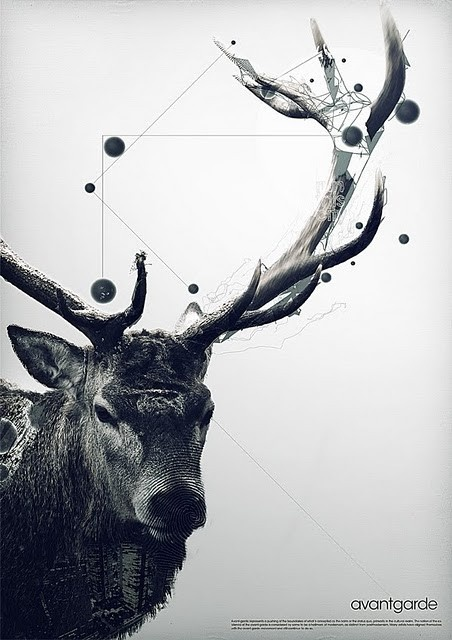 elk antlers graphic - photo #18