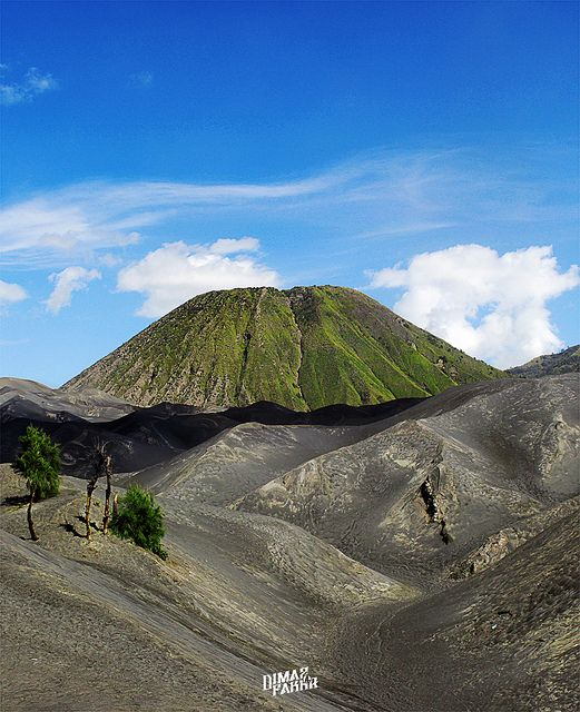 Bromo Mt. - Malang - Indonesia