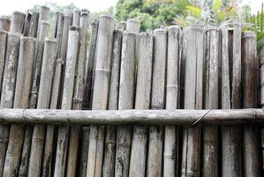 A bamboo fence is a cheap fencing alternative.
