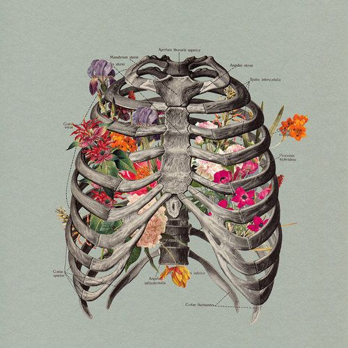 Somehow reminds me of 'Lungs' by Florence and the Machine