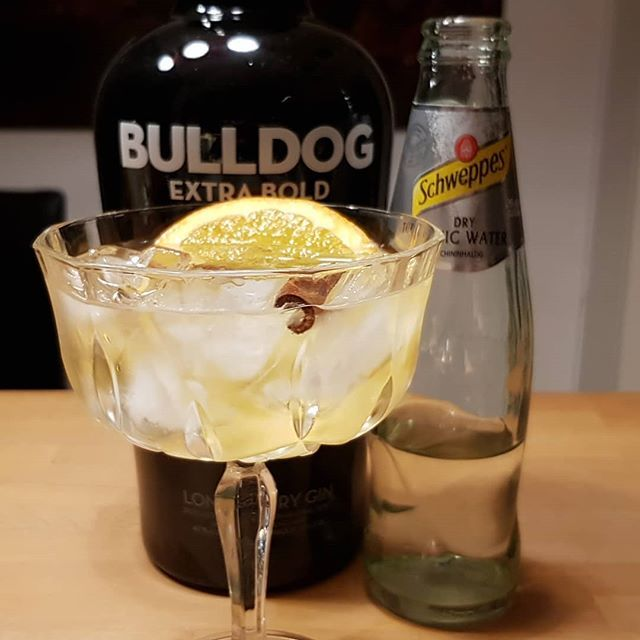 Bulldog Gin Schweppes Dry Tonic orange cinnamon. #gintonic #gin #dandywithlens #gt DandyWithLens.com