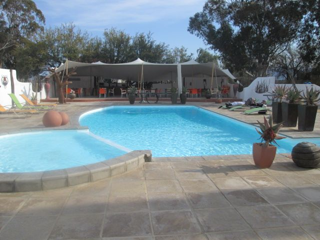 Inverdoorn's awesome outdoor pool...relax and enjoy. #Safari #CapeTown #Wildlife
