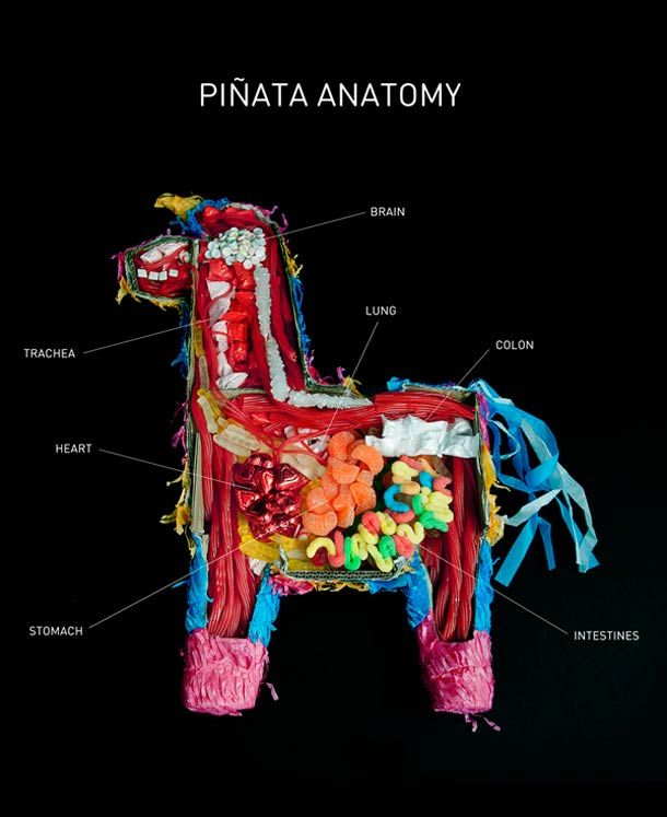 Interesante // Anatomy of a Pinata!