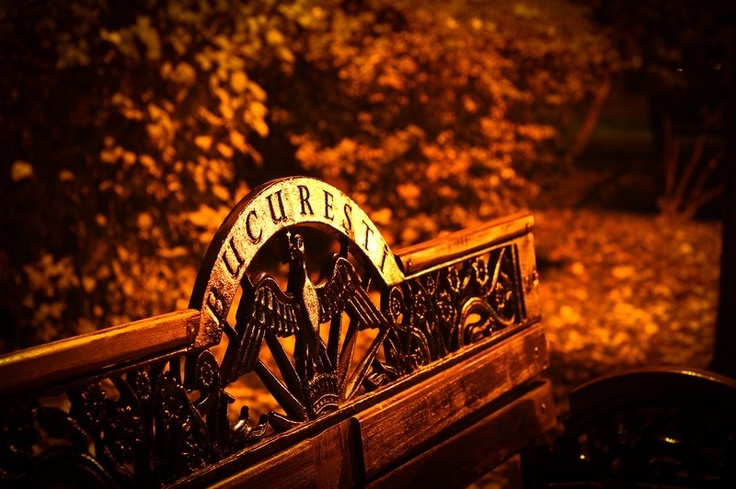 A bench in Herastrau Park...