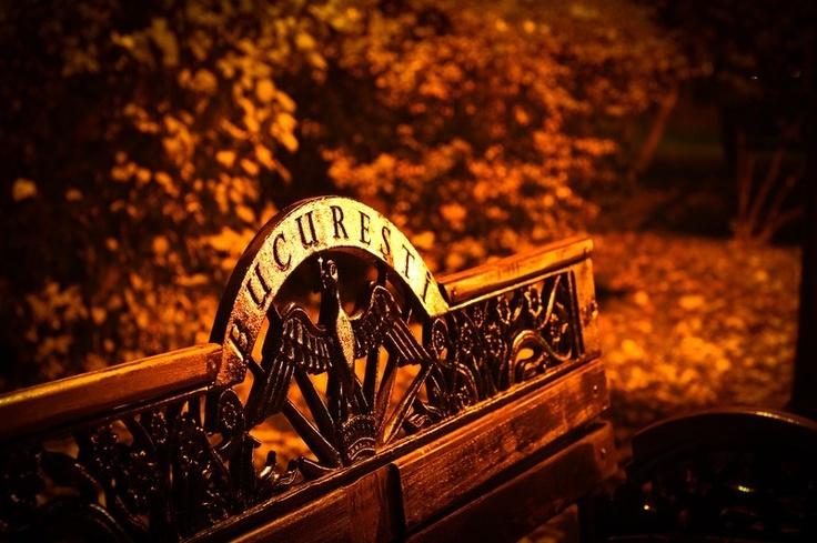 A bench in Herastrau Park...