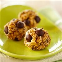 Dark Chocolate Peanut Butter Oatmeal Bites
