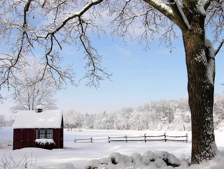 from Martha Beck's blog...love this picture...it is my winter screensaver picture now...especially since we're not having much of a winter...