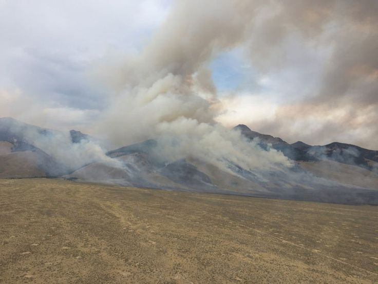 Courtesy BLM IDAHO FALLS — The Bell Mountain Fire is now 50 percent contained after continued efforts by federal firefighters. The fire, located seven miles north of Clyde in Butte County, is burning near Bell Mountain and Basinger Creek. The fire is spread across Bureau of Land Management property, the Salmon-Challis National Forest, and a small portion of Idaho Department of Lands property. The fire started after a lightning strike Wednesday. No structures are threatened and no roads have…
