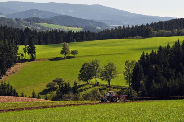Scenery near Wenigzell