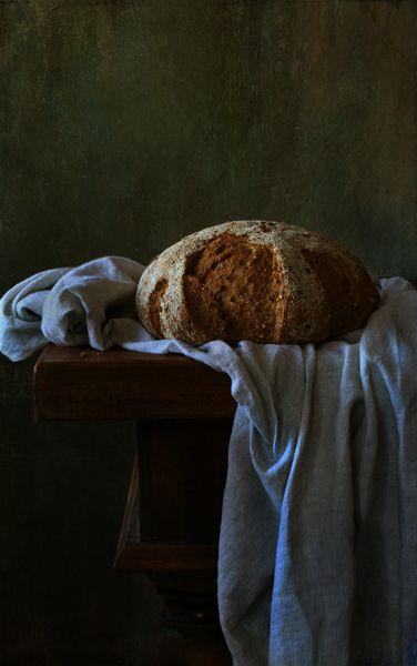 photographer: Lubov Pozmogova-Brosens