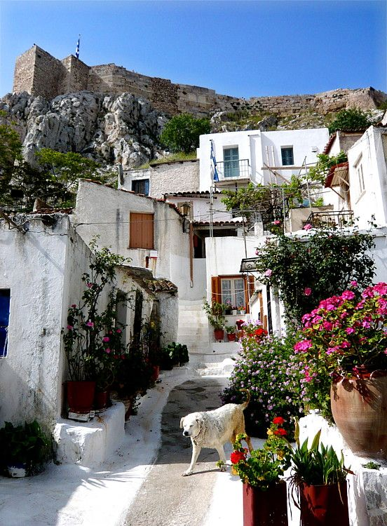 Anafiotika, Plaka, is a scenic tiny neighborhood of Athens, part of old historical neighborhood called Plaka. It lies in northerneast side of the Acropolis hill.