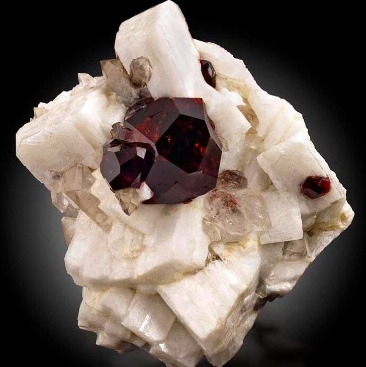Garnet crystal on Albite from Gilgit, Gilgit District, Northern Areas, Pakistan