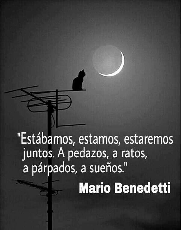 """""""Estábamos, estamos, estaremos juntos. A pedazos, a ratos, a párpados, a sueños """" Mario Benedetti"""