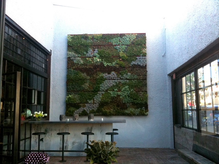 Vertical succulent wall panel from Bankers Hill Bar & Restaurant in San Diego