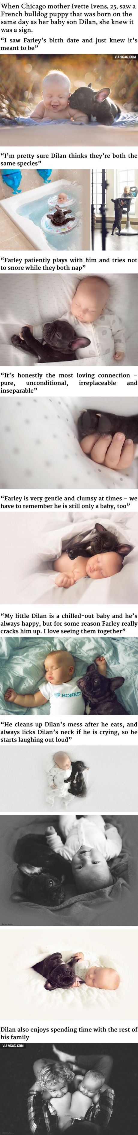 best naps images on pinterest cats ways to say i love you