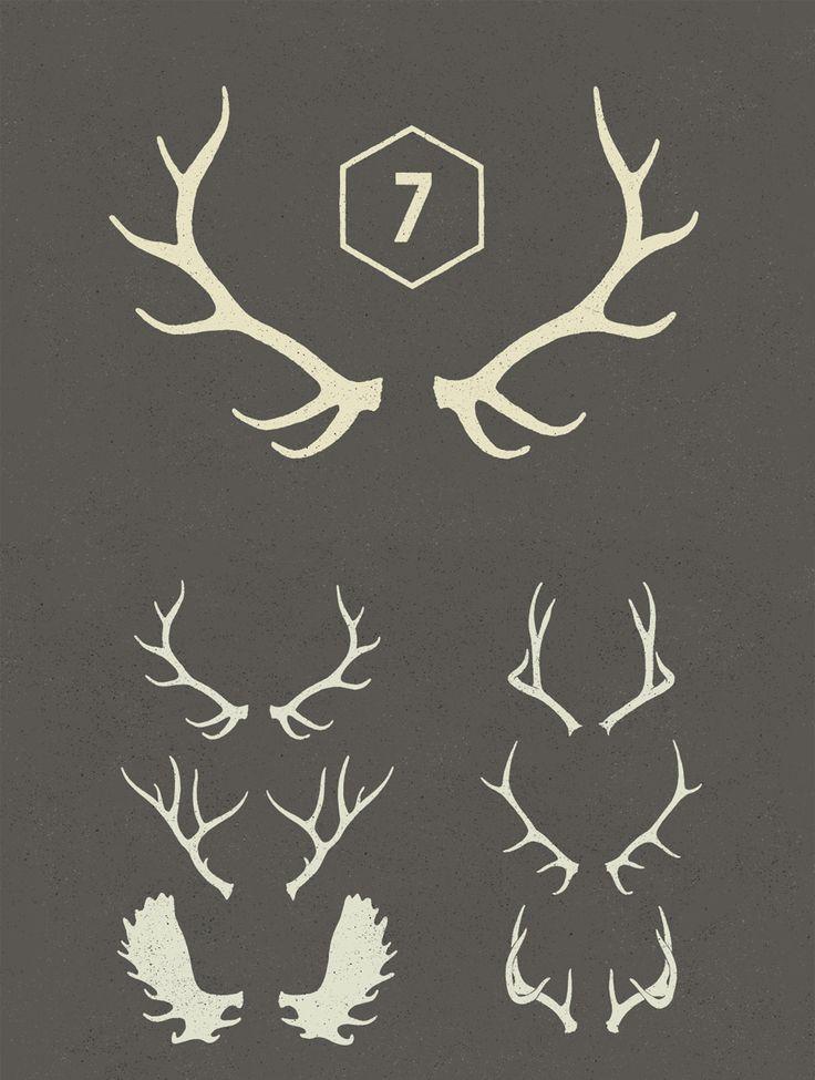 Antlers vectors, taken from our Free Christmas Design Bundle