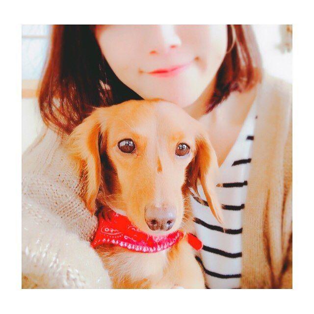 ♪♪♪ ・ たまには食べ物じゃなく 愛犬ハナコ🐶🐾 ・ ハナコはこたつが大好きで 誰よりも先に入ります。 しかもド真ん中に 笑 暑くなってきたら、顔だけのぞかせて! 今日は午後からハナコとずーっとごろごろ😊 いい子にしてたのに、また熱が上がってくるという💦 あー晩御飯どうしよう… ・ ・ #犬との暮らし #愛犬#ミニチュアダックス #ダックス #4人きょうだい#4人のママ #おしゃれさんと繋がりたい #車好きな人と繋がりたい #車好き女子 #ldhファンさんと繋がりたい #お弁当#手作りお菓子#手作りパン#instagood #instafood #foodpic #dogstagram #miniaturedachshund#pet