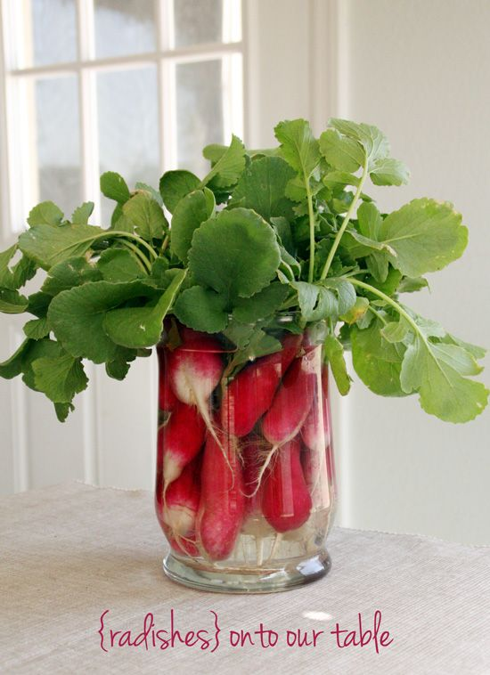 Radish Centerpiece Teal Bird Concepts. Very smart for spring -- and lovely way to showcase veggie love.