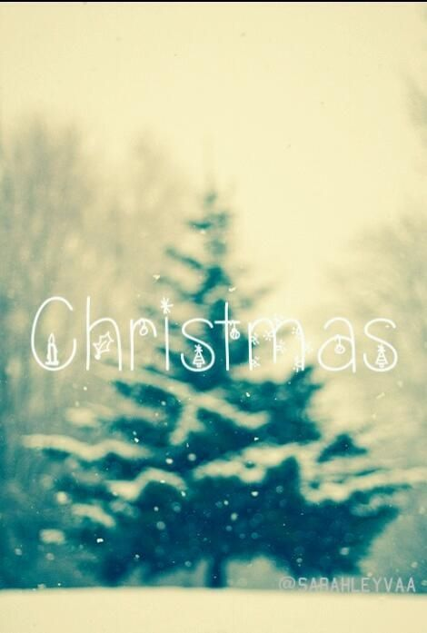 Christmas Pictures, Photos, and Images for Facebook, Tumblr, Pinterest, and Twitter