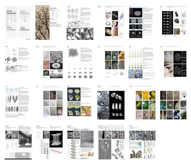 portfolio for synthetic aesthetics residency app | Flickr – 相片分享!