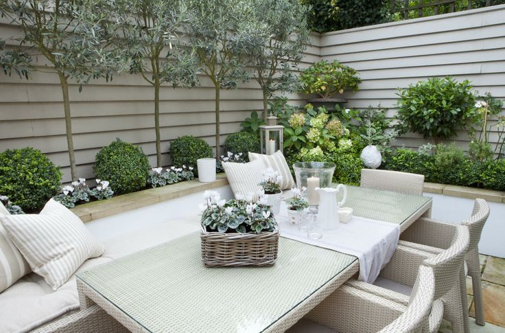 This small garden Mediterranean planting scheme includes Olive trees, boxwood topiary balls, myrtle, white hydrangeas and rosemary...Full details on Modern Country Style blog: Leopoldina Haynes' Small Garden