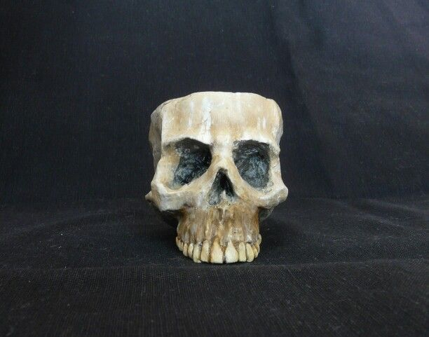 Skull candle holder  https://www.etsy.com/listing/251104877/
