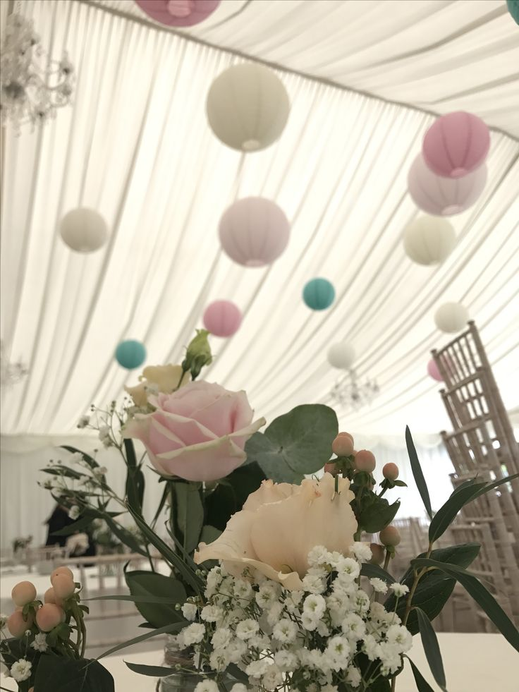 40 cream, soft pink, teal paper lanterns