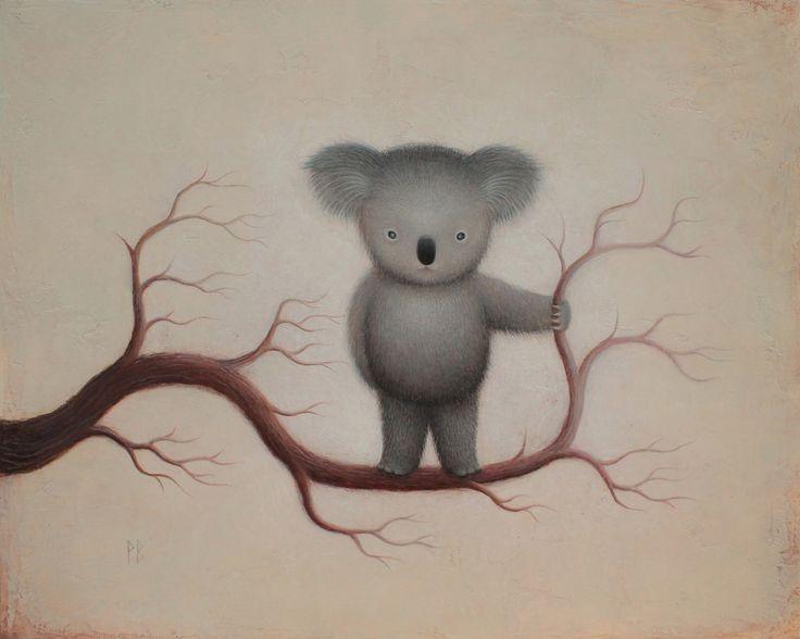 Koala by Paul Barnes